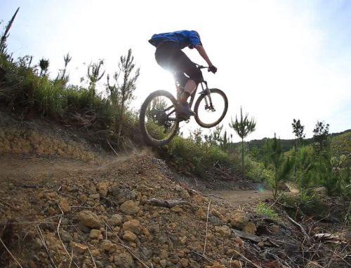 Ride Waitangi Mountain Bike Park